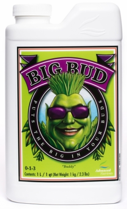 Advanced Nutrients Big Bud 10L
